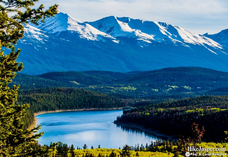 Photo Spots in Jasper National Park - Pyramid Overlooking Patricia Lake